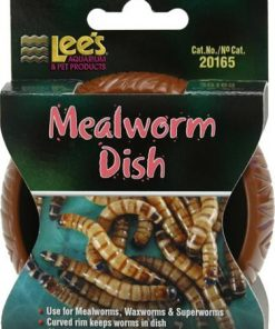 Lee's Mealworm Dish