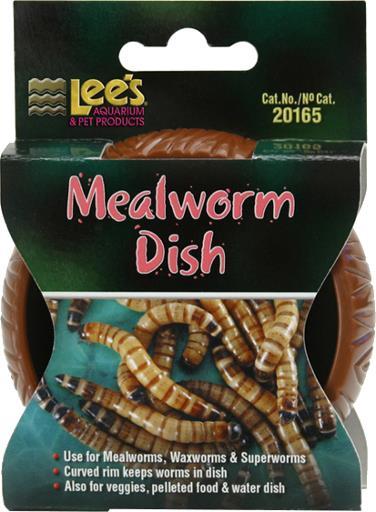 Lee's Mealworm Dish